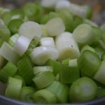 almost forgot the green onions!